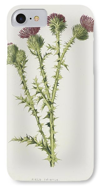 Field Thistle IPhone Case