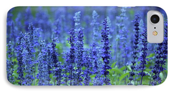 IPhone Case featuring the photograph Fields Of Blue by Rowana Ray