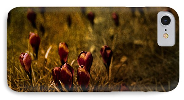 Fields Of Elegance Phone Case by Loriental Photography