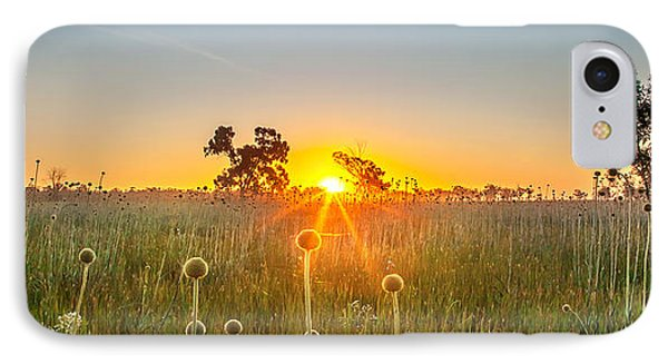 Fields Of Gold Panorama IPhone Case by Az Jackson