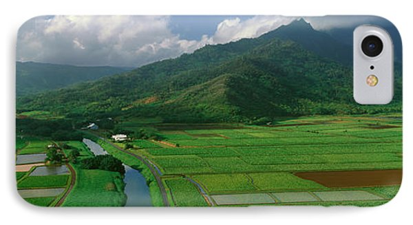 Fields Of Taro, Hanalei Valley IPhone Case by Panoramic Images