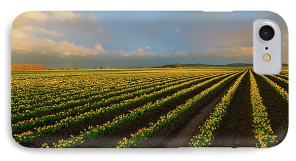 IPhone Case featuring the photograph Fields Of Yellow by Mike Dawson