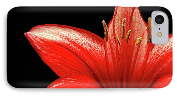 IPhone Case featuring the photograph Fiery Red by Judy Vincent