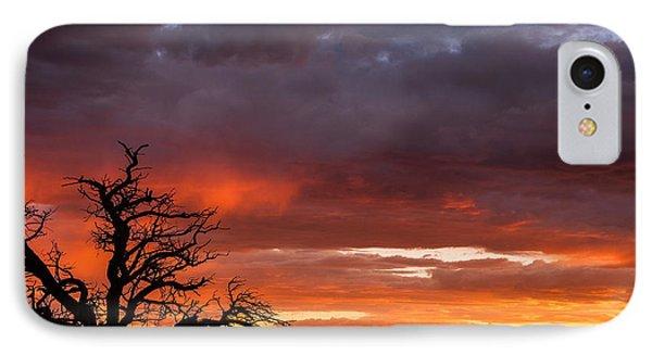 Fiery Sunset IPhone Case by Elena E Giorgi