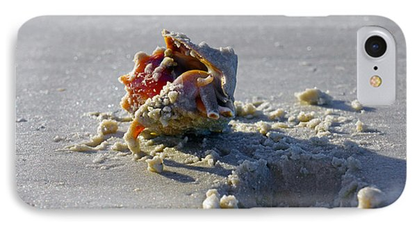 Fighting Conch On The Beach IPhone Case