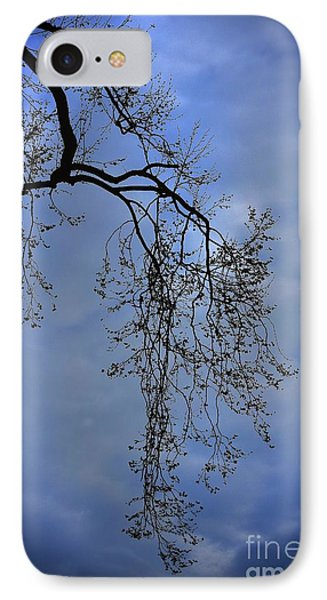 IPhone Case featuring the photograph Filigree From On High by Skip Willits