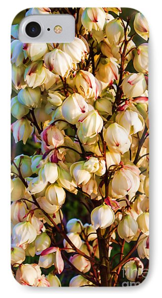 Filled With Joy IPhone Case by Roberta Byram