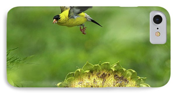 Finch Flight IPhone Case