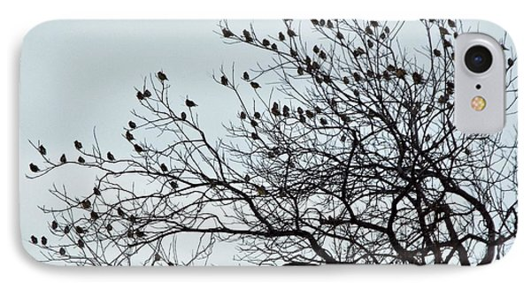 Finches To The Wind IPhone Case