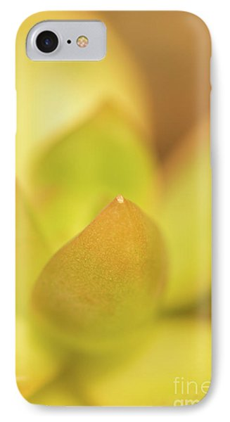 IPhone Case featuring the photograph Find Focus In Nature by Ana V Ramirez