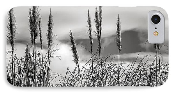 Fine Art Black And White-188 IPhone Case