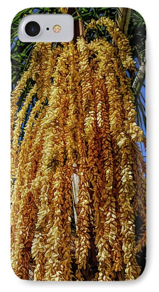 IPhone Case featuring the photograph Fine Wine Cafe Cascading Seed Pod by Aimee L Maher Photography and Art Visit ALMGallerydotcom