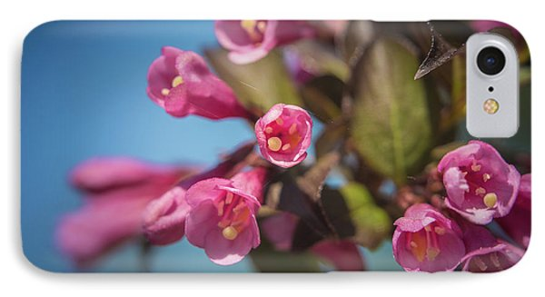 IPhone Case featuring the photograph Fine Wine Weigela by William Lee