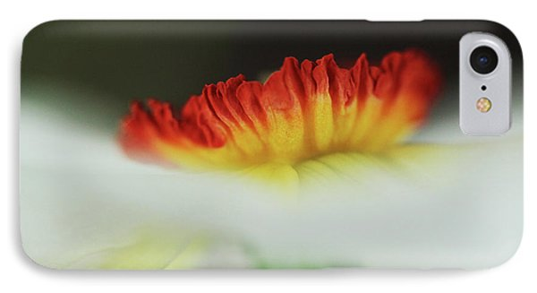 Fire In The Mist  IPhone Case by Connie Handscomb