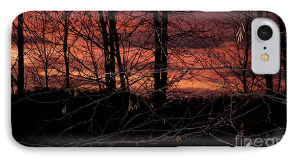 Fire In The Sky Phone Case by Robert Sander