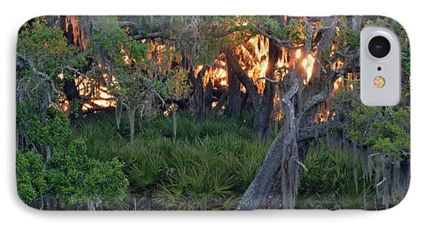 IPhone Case featuring the photograph Fire Light Jekyll Island 02 by Bruce Gourley