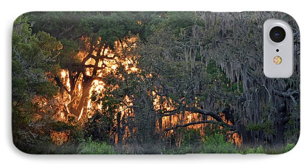 IPhone Case featuring the photograph Fire Light Jekyll Island 03 by Bruce Gourley