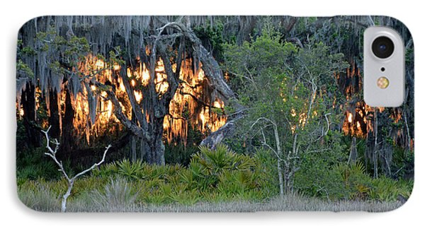 IPhone Case featuring the photograph Fire Light Jekyll Island by Bruce Gourley