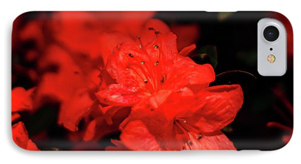 Fire Red Azaleas IPhone Case by Tamyra Ayles