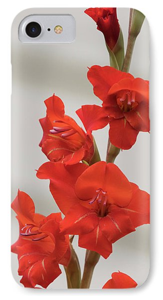IPhone Case featuring the photograph Fire Red Gladiolas by Angie Vogel