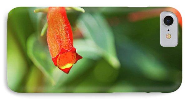 Firecracker Blossom Phone Case by Douglas Barnett