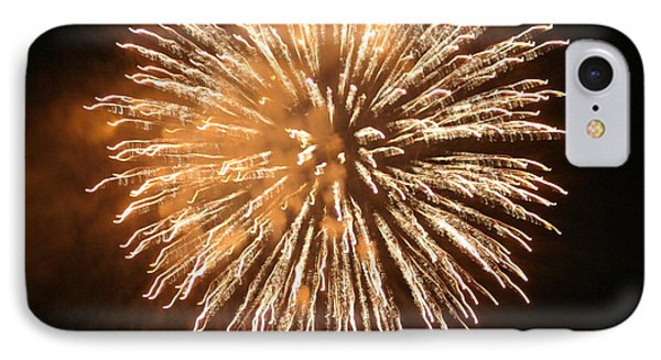 Fireworks In The Park 5 IPhone Case by Gary Baird
