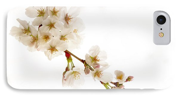 IPhone Case featuring the photograph first blossoms on the Basin by Edward Kreis