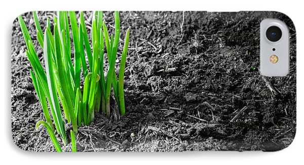 First Green Shoots Of Spring And Dirt IPhone Case by John Williams