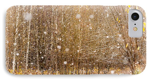 First Snow. Snow Flakes I Phone Case by Jenny Rainbow