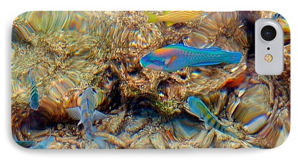 Fish IPhone Case by Betty Buller Whitehead