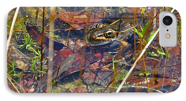 IPhone Case featuring the photograph Fish Faces Frog by Al Powell Photography USA