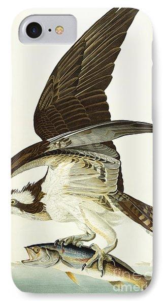 Fish Hawk IPhone 7 Case by John James Audubon