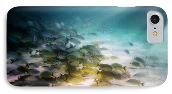 Fish Swim In The Light Phone Case by Sven Brogren