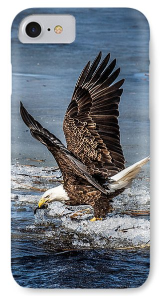 Fishing Bald Eagle IPhone Case by Paul Freidlund
