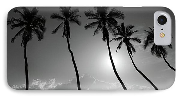 Five Coconut Palms Phone Case by Pierre Leclerc Photography