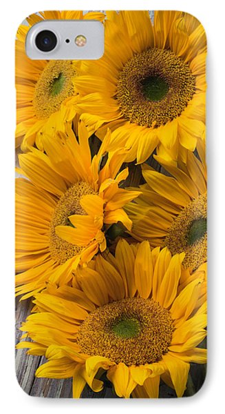 Five Farm Grown Sunflowers IPhone Case by Garry Gay