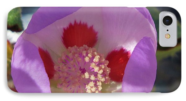 IPhone Case featuring the photograph Five-spot by Michele Penner