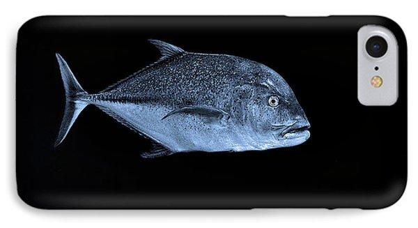 Fla-150811-nd800e-26052-bw-blue IPhone Case by Fernando Lopez Arbarello