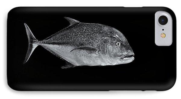 Fla-150811-nd800e-26052-bw-selenium IPhone Case by Fernando Lopez Arbarello