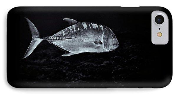 Fla-150811-nd800e-26063-bw-selenium IPhone Case by Fernando Lopez Arbarello