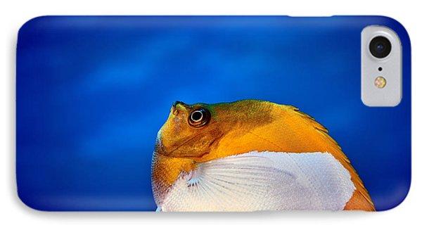 Fla-150811-nd800e-26086-color IPhone Case by Fernando Lopez Arbarello