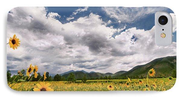 Flagstaff Wildflower Extravaganza IPhone Case