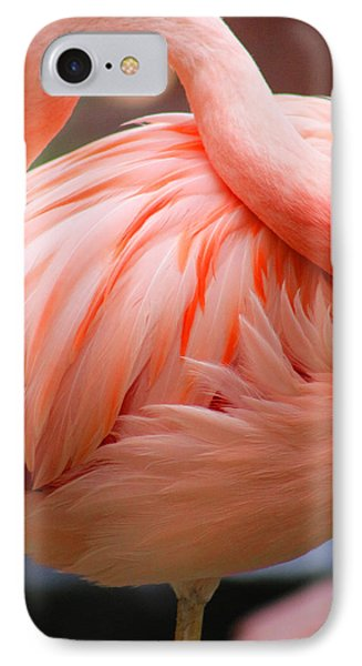 Flame Colored IPhone Case