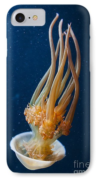 Flame Jelly IPhone Case
