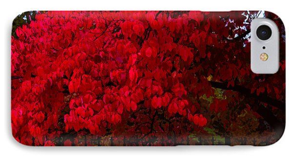 Flames Of Autumn IPhone Case