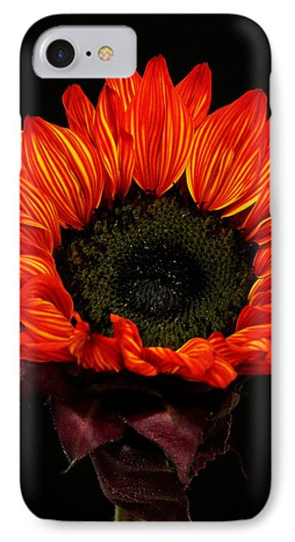 IPhone Case featuring the photograph Flaming Flower by Judy Vincent