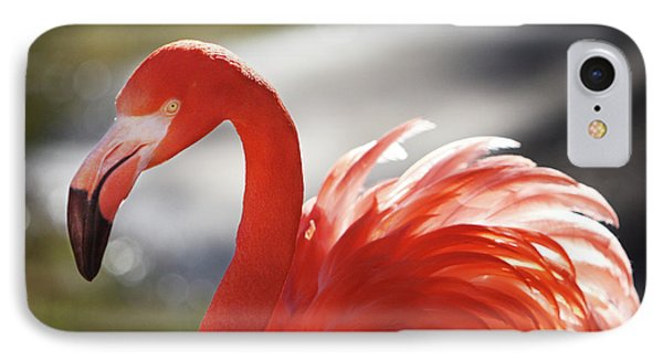 IPhone Case featuring the photograph Flamingo 2 by Marie Leslie