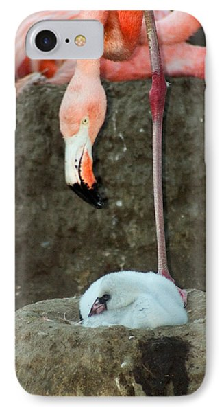 Flamingo And Chick Phone Case by Anthony Jones