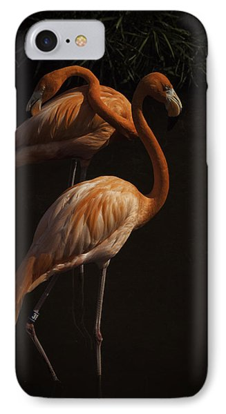Flamingo Delight IPhone Case by Rob Wilson