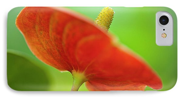 Flamingo Flower 2 Phone Case by Heiko Koehrer-Wagner